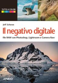 Il negativo digitale