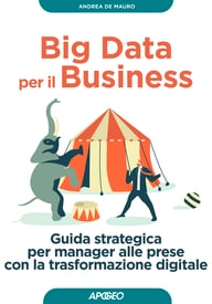 Big Data per il Business – copertina