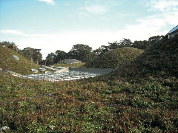 Il tetto della California Academy of Sciences di San Francisco