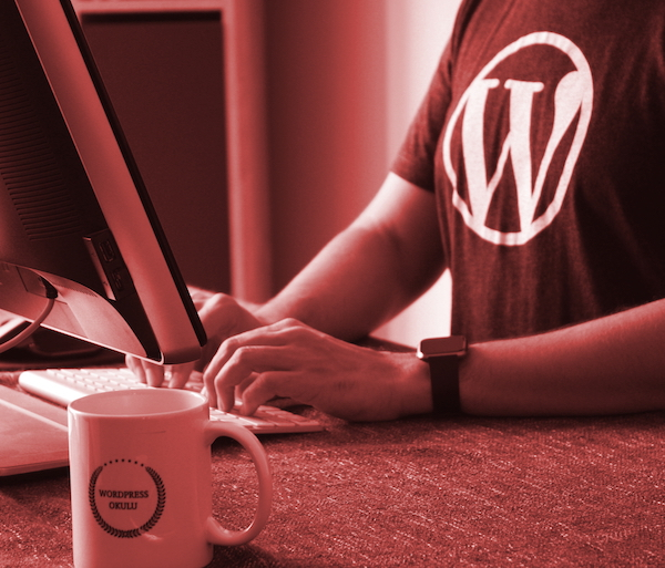 5 risposte su… Sviluppare con WordPress