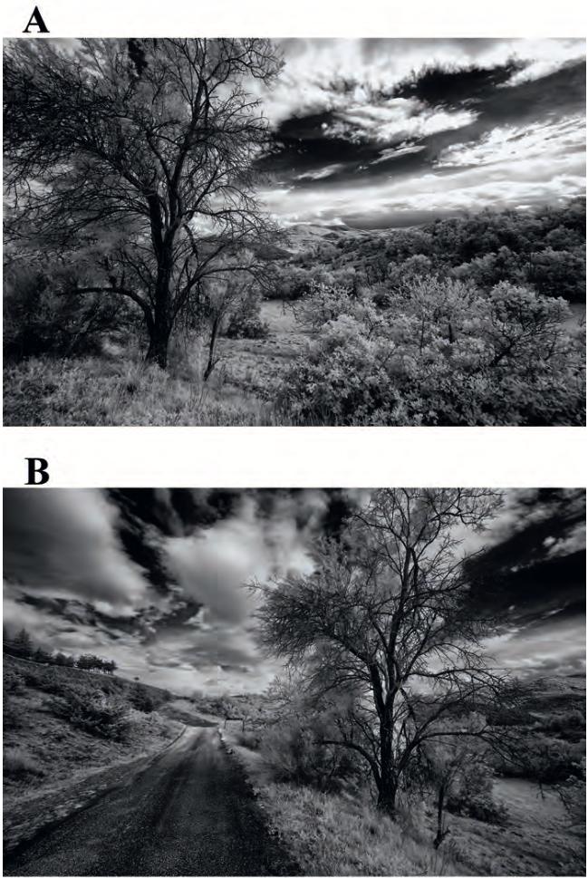 Cambiare prospettiva significa raccontare fotograficamente storie differenti