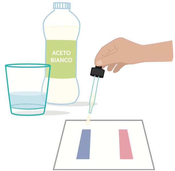 La cartina tornasole reagisce in base all'acidità di che cosa la tocca