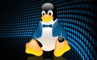 Linux formato business
