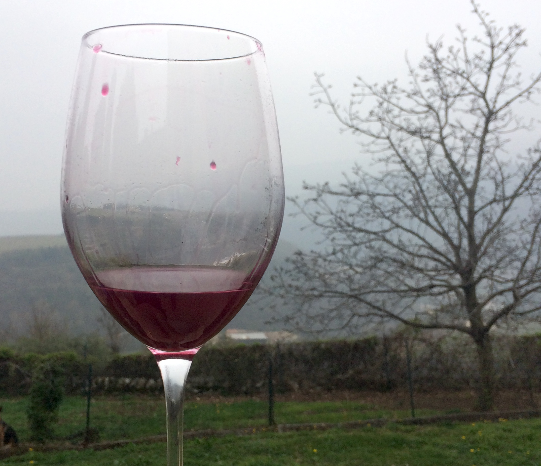 Per avere buoni risultati con il vino sui social media, dobbiamo andare fino in fondo all'esperienza… come con un buon bicchiere