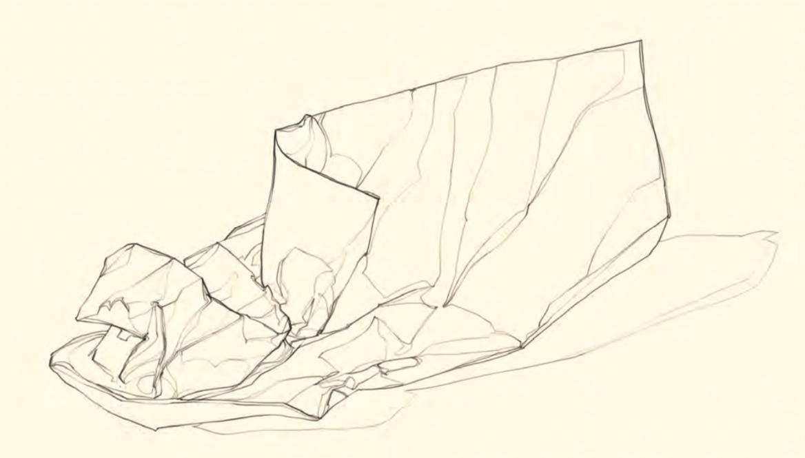 Il risultato dell'esercizio: una sorta di mappa artistica della nostra percezione. Con qualche ulteriore modifica del peso dei tratti e l'ombreggiatura di qualche superficie, si potrebbe già ottenere un disegno molto plastico.