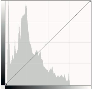 L'istogramma di Curve