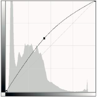 Regolazione di Curve