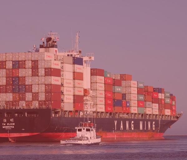 Usare Docker dentro Docker: si può