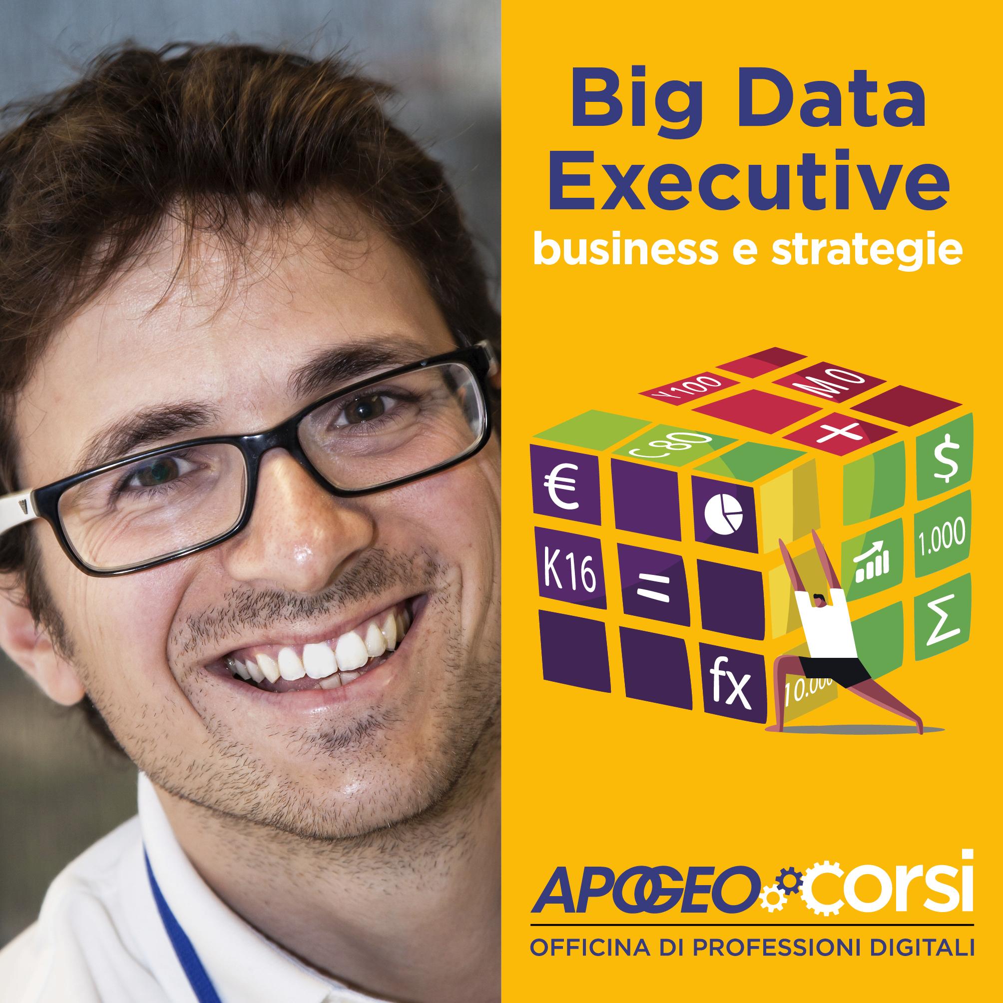 big-_data_executive-home