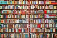 Libri per un programmatore