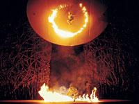 Cirque du Soleil, convivere con il rischio