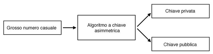 Gli algoritmi a chiave asimmetrica generano una chiave pubblica e una chiave privata basandosi su un grosso numero casuale