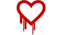 Heartbleed: brutto colpo al cuore di Internet