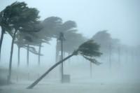 Sessanta volte uragani/5