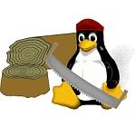 Disabili: Linux è dalla vostra parte