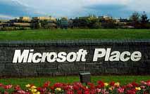 Sony e IBM: insieme contro Microsoft