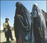 Attaccato il sito ufficiale del governo afgano