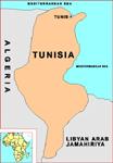 In Tunisia arrestati 20 ragazzi accusati di attività sovversiva su Internet