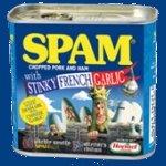 Venticinque anni di spam