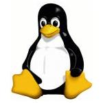 Sempre duttile e versatile il pinguino