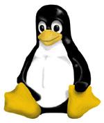 Miti e fatti in nome del pinguino