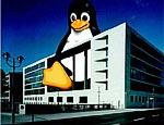Prudenti ma convinte, le PA europee abbracciano il pinguino