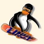 Nuovo abbraccio tra grandi capitali e il pinguino