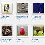 Attività di gruppo con Flickr
