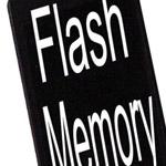 Nel 2009 la memoria Flash sarà universale