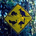 In Australia schermi piatti in pericolo