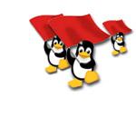 Linux in crescita in Cina