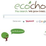 Echoco: un motore di ricerca ecologico