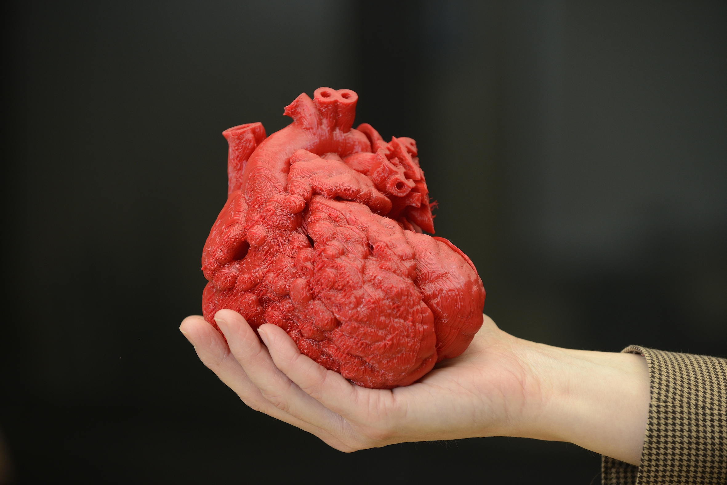 Cuore stampato in 3D