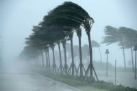 Sessanta volte uragani/3